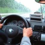 Работа водителем – востребованный вид деятельности