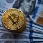 Как подобрать надежный и выгодный обмен криптовалюты?